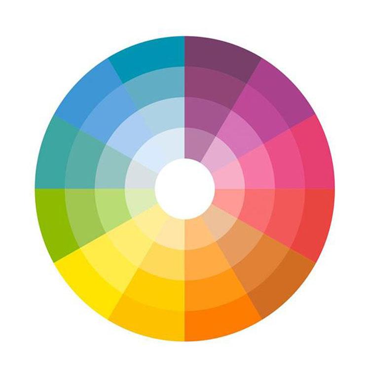 Color Block Circulo Cromatico 1